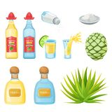 Tequila bottles, shot glass, agave root, vector illustration. Mexican alcohol drinks and cocktails menu design elements royalty free illustration