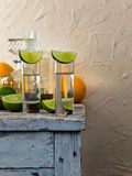 Tequila and citrus fruits Stock Photography