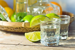 Tequila and citrus fruits Royalty Free Stock Images