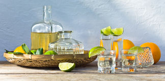 Tequila and citrus fruits Stock Images