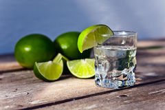 Tequila and citrus fruits Royalty Free Stock Photography