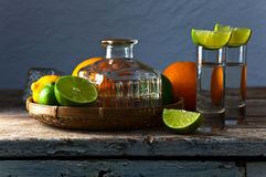 Tequila and citrus fruits Royalty Free Stock Photo