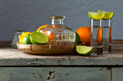 Tequila and citrus fruits Stock Photos