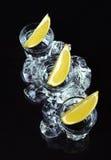 Tequila com cal no fundo preto Imagens de Stock Royalty Free