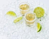Tequila del oro con la sal y la cal imagen de archivo