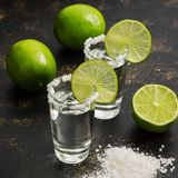 Tequila en cal y sal en un fondo oscuro Foco selectivo foto de archivo libre de regalías