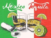 Tequila i exponeringsglas på bakgrund för mexicansk flagga Fotografering för Bildbyråer
