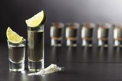 Tequila, Kalk und Salz Lizenzfreie Stockfotos