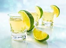 Tequila with lime royalty free stock photography