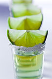 Tequila , lime and salt Royalty Free Stock Photo