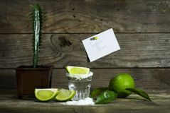 Tequila with lime and salt. On a wooden background royalty free stock images