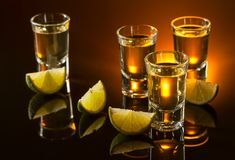 Tequila and lime slices . stock photography