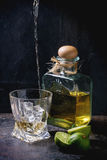 Tequila and limes Stock Image