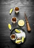 Tequila med salt och limefrukt royaltyfri bild