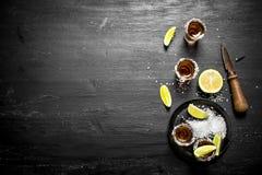 Tequila med salt och limefrukt Royaltyfri Fotografi