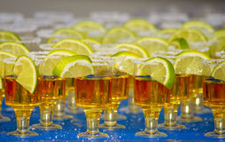 Tequila. The Mexican national alcoholic drink Stock Images