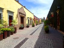 Tequila Mexico arkivbilder