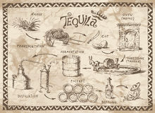 Tequila project Stock Photo