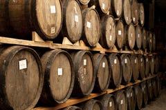 Tequila przetwarzać dojrzałego Zdjęcie Stock