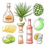 Tequila pub, meksykańska ręka rysujący napoju set royalty ilustracja