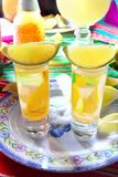 Tequila salt lemon alcohol mexican drink Royalty Free Stock Photography