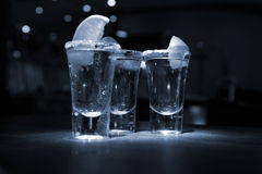 Tequila shot. Party time in the bar with 3 tequila shots  with salt and lime Stock Photography