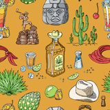 Tequila shot vector mexican alcohol in bottle drink with lime and salt in taqueria in Mexico illustration set of royalty free illustration