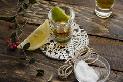Tequila Shots with Lime and Salt Royalty Free Stock Photo