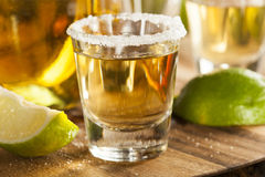 Tequila Shots with Lime and Salt Stock Image