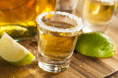Tequila Shots with Lime and Salt Stock Images