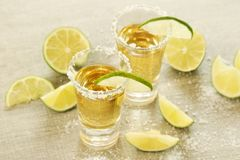 Tequila shots. Two tequila shots ready with salt and lime slices royalty free stock photos