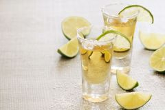 Tequila shots. Two tequila shots ready with salt and lime slices royalty free stock image