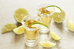 Tequila shots. Two tequila shots ready with salt and lime slices royalty free stock photo