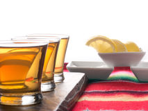 Tequila shots. On a white background royalty free stock photography