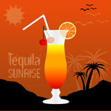 Tequila Sunrise Cocktail Background Royalty Free Stock Photo
