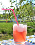 Tequila sunrise at a rural summer garden Royalty Free Stock Image