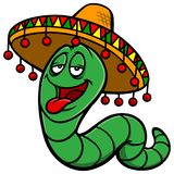 Tequila Worm Royalty Free Stock Image
