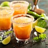 Tequila wschodu słońca margarita Zdjęcia Stock
