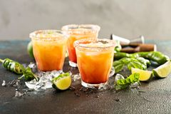 Tequila wschodu słońca margarita Obraz Stock
