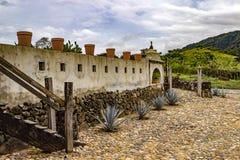 Tequila wytwórnia win Meksyk Zdjęcia Royalty Free