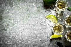 Tequilaen med limefrukt och saltar royaltyfri fotografi