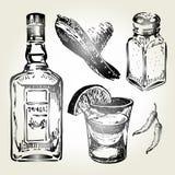 Tequilaen skissar uppsättningen vektor illustrationer