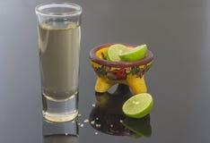 Tequilaexponeringsglas med citronen och saltar royaltyfria bilder