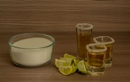 Tequilaschoten met citroen en zout royalty-vrije stock foto