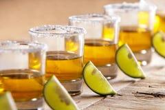 Tequilaskott i rad med limefruktskivan och saltar arkivbild