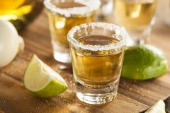 Tequilaskott med limefrukt och saltar royaltyfri bild
