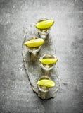 Tequilaskott med limefrukt och saltar royaltyfri fotografi