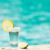 Tequilaskott med limefrukt på blå bakgrund Arkivbild