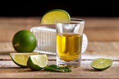 Tequilaskottet med limefrukt och saltar royaltyfri bild