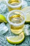 Tequilaskottet med limefrukt och saltar royaltyfri foto